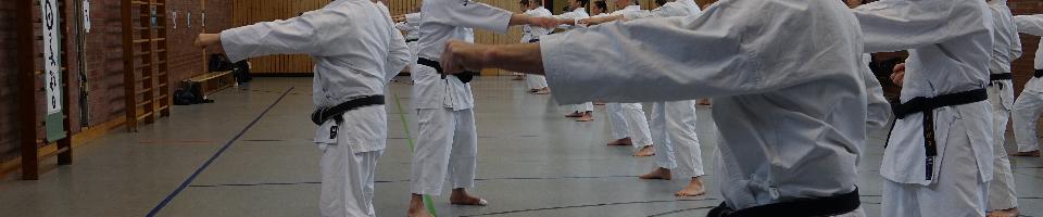 karate2_galerie.JPG