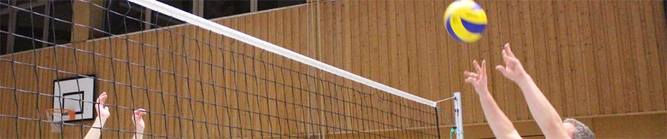 Volley2.jpg